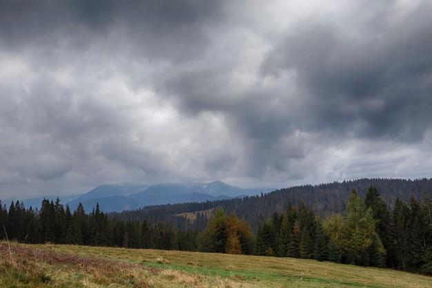 Belle vue sur la montagne de grande taille.
