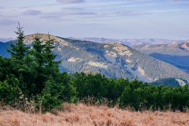 Belle vue sur les montagnes