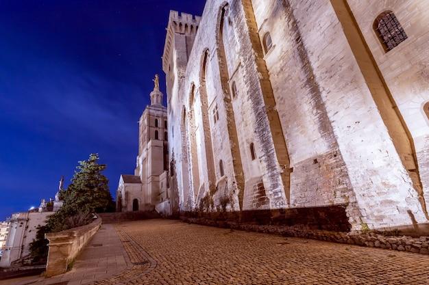 Belle vue nocturne de la cathédrale notre-dame des doms et du palais des papes à avignon, france.