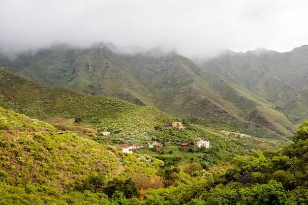 Belle vue paisible sur la pente raide herbeuse verte. ténérife. beau village sur les pentes de la montagne.