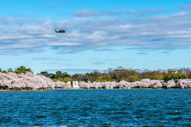 Belle vue sur le parc du président, washington dc, usa capturé sous le ciel bleu