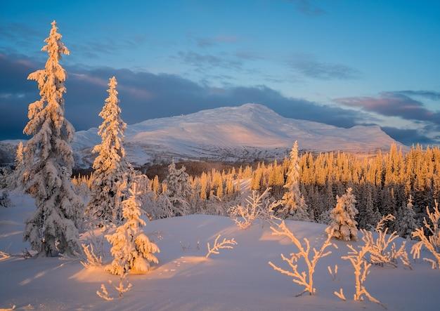 Belle vue sur le paysage d'hiver au coucher du soleil