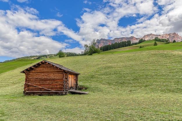 Une belle vue sur une prairie alpine fraîchement coupée.