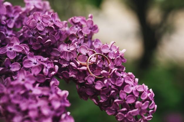 Belles bagues de mariage sur fond de lilas