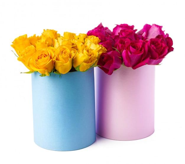Belles boîtes avec des roses fraîches isolées