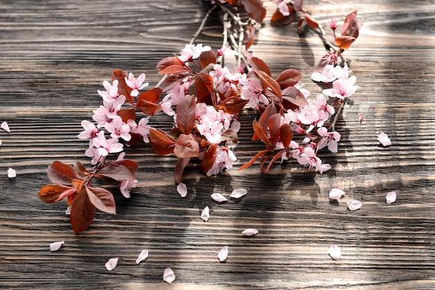 Belles branches fleuries sur bois