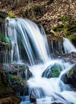 Belles cascades avec des rochers moussus dans la forêt