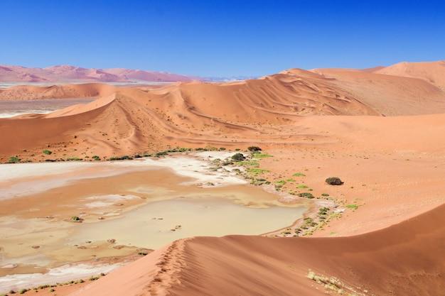 Belles dunes du lever du soleil, paysage africain du désert du namib, sossusvlei, namibie, afrique du sud