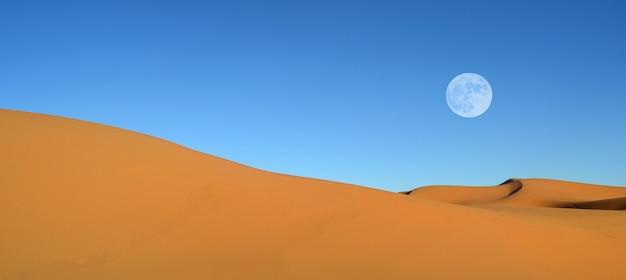 Belles dunes de sable et ciel bleu