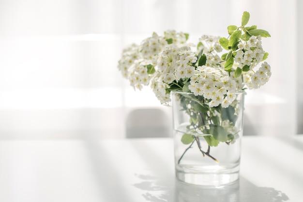 Belles fleurs blanches sur la table près de la fenêtre.