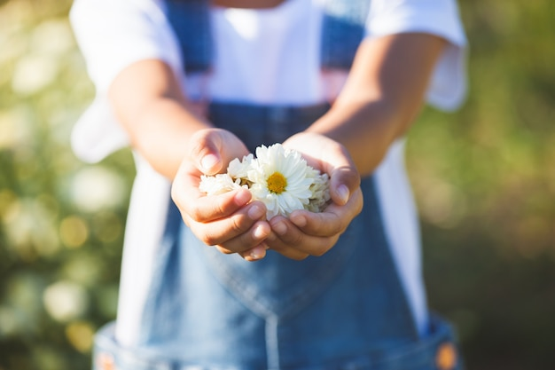 Belles fleurs dans la main de l'enfant dans le champ de fleurs