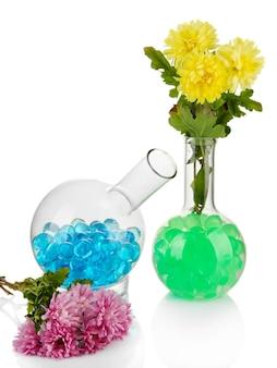Belles fleurs dans un vase avec hydrogel isolated on white