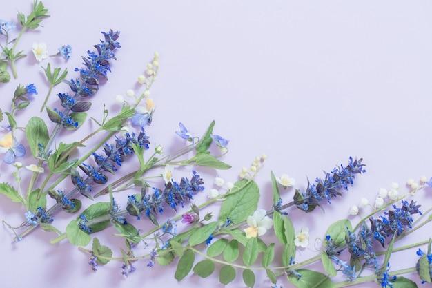 Belles fleurs d'été sur fond bleu