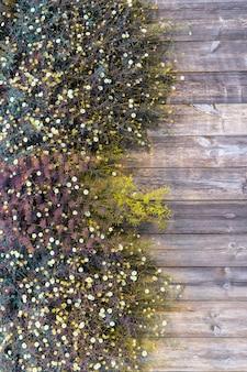 Belles fleurs sur fond en bois.