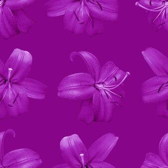 Belles fleurs de lys roses. modèle sans couture de fleur de lys. fond naturel floral.