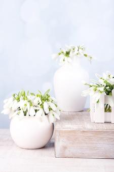 Belles fleurs de perce-neige sur le style vintage