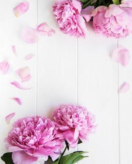 Belles fleurs de pivoine rose