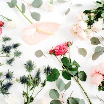 Belles fleurs: roses bombées, érythème bleu, fleur d'anthurium rose, branches d'eucalyptus sur blanc