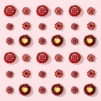 Belles fleurs rouges séchées petites fleurs sur rose tendre