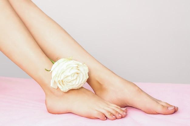 Belles jambes féminines avec une rose blanche après épilation sur un drap rose sur fond gris