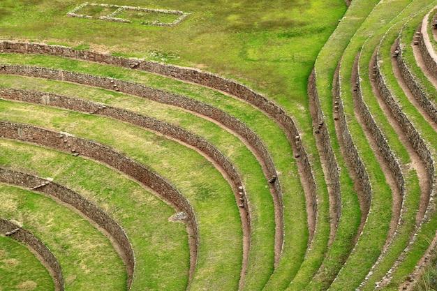 Belles lignes de terrasses agricoles incas, ruines de moray, vallée sacrée des incas, pérou