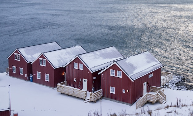 Belles lofoten nordiques scandinaves en hiver