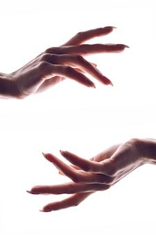 Belles mains féminines isolées