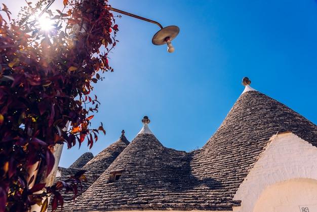 De belles maisons à un étage de construction arrondie, appelées trulli, typiques de la région d'alberobello en italie.