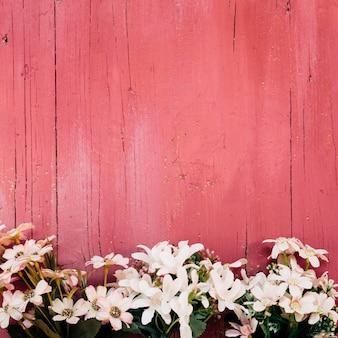 Belles marguerites sur plancher en bois