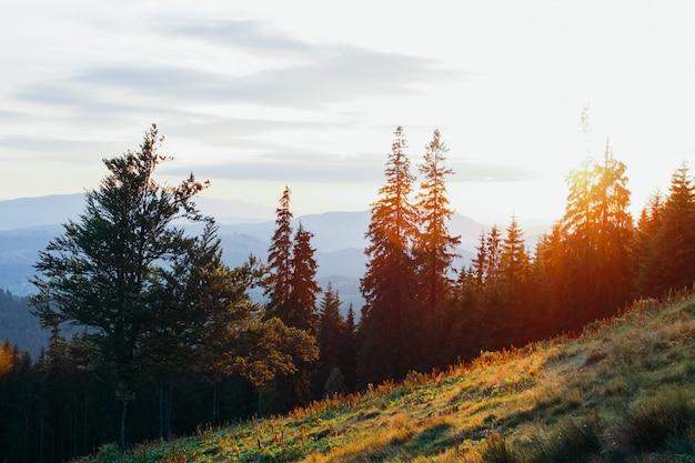 Belles montagnes paisibles au coucher du soleil en été