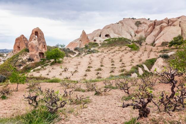 Belles montagnes roses dans la vallée de la cappadoce. super paysage.