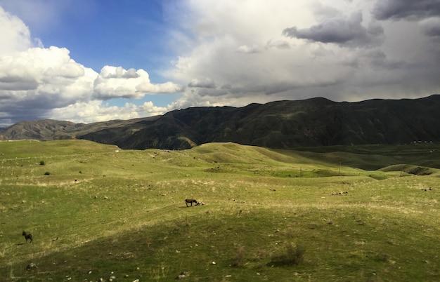 Belles montagnes vertes d'arménie au printemps