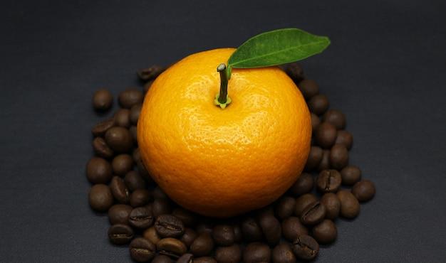 Belles oranges, grains de café, photoshoot