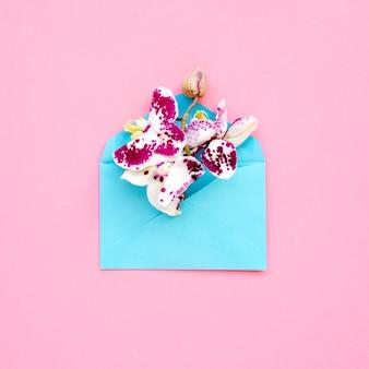 Belles orchidées dans l'enveloppe