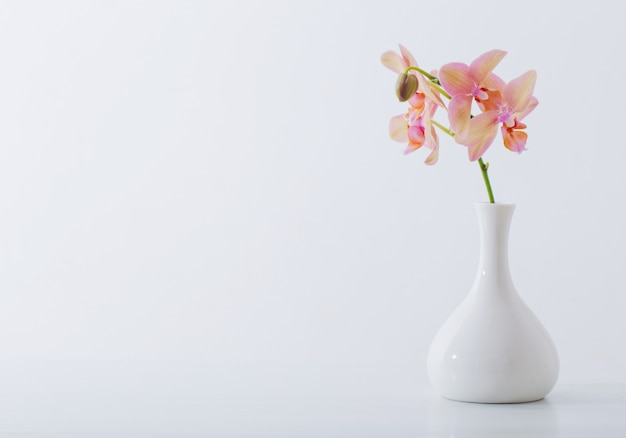 Belles orchidées dans un vase blanc sur tableau blanc