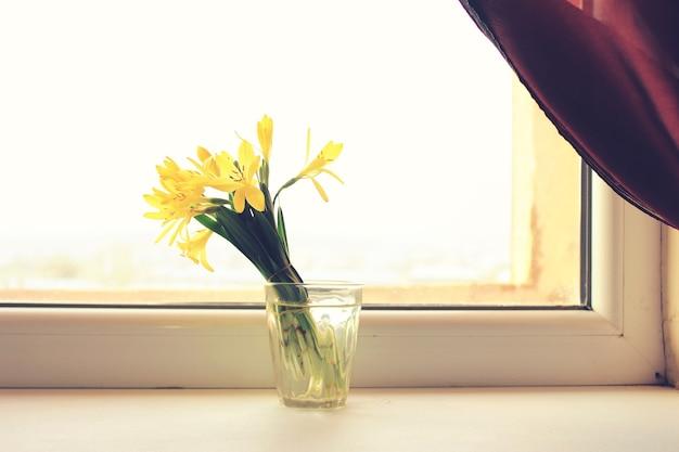 Belles perce-neige dans des vases sur fond de fenêtre
