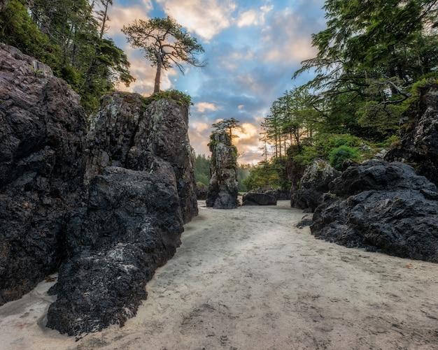 Belles piles de mer au lever du soleil sur la baie de san josef dans le parc provincial de cape scott sur l'île de vancouver, colombie-britannique, canada.