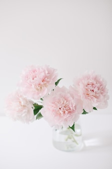 Belles pivoines roses dans un vase en verre sur fond blanc