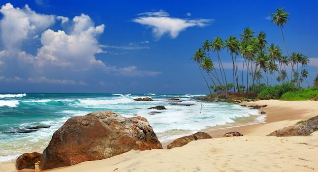 Belles plages sauvages du sri lanka