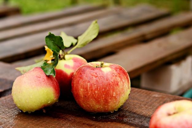 Belles pommes mûres sur un fond en bois. récolte d'automne