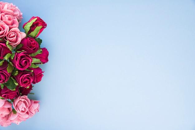 Belles roses sur bleu