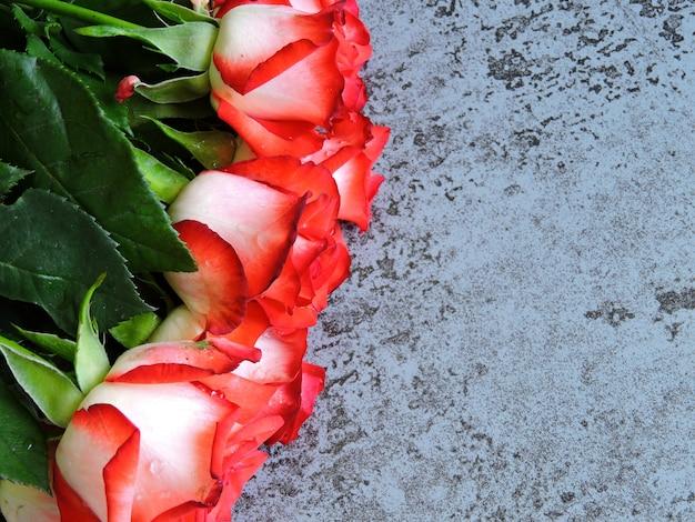 Belles roses sur fond gris. un cadeau pour une date le jour de la saint-valentin. espace copie