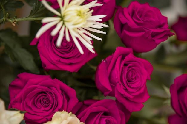 Belles roses roses dans le bouquet