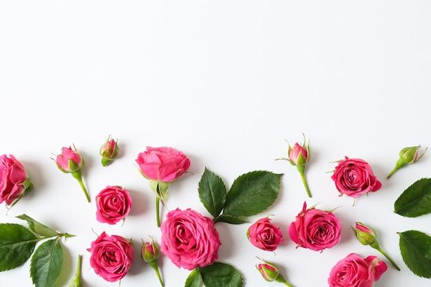 Belles roses roses fraîches