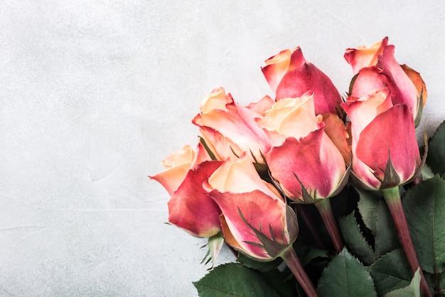 Belles roses roses