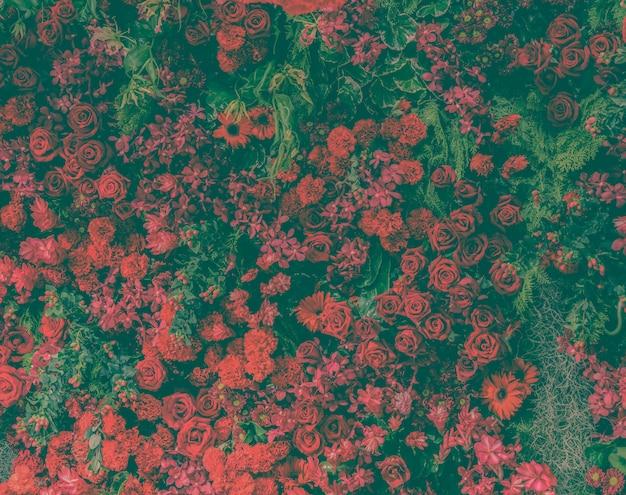 Belles roses rouges fraîches et différents types de fleurs rouges décorées mur de jardin
