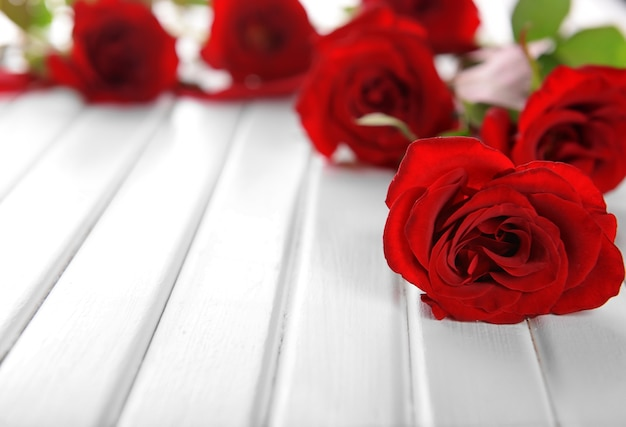 Belles roses rouges sur mur en bois blanc
