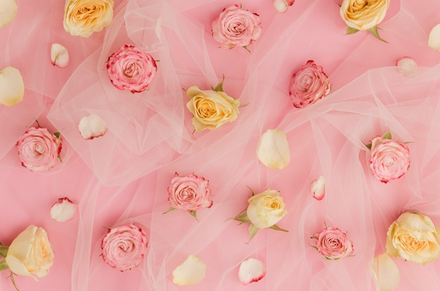 Belles roses sur tissu tulle