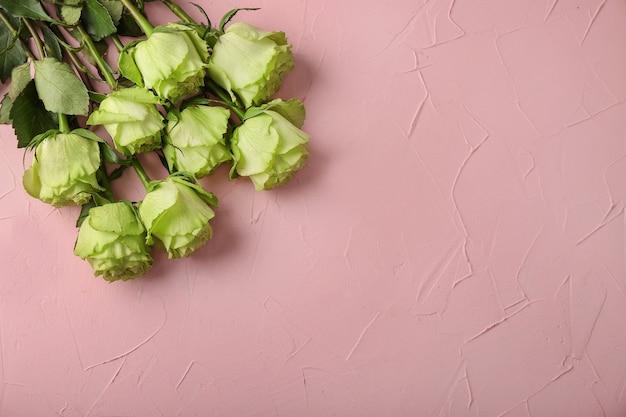 Belles roses vertes sur mur de couleur