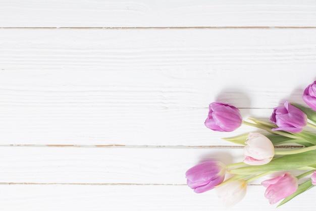 Belles tulipes sur fond en bois blanc